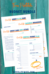 budget bundle, debt attack, savings plan, spend, bills, paycheck, income, expense, interest rate, printable