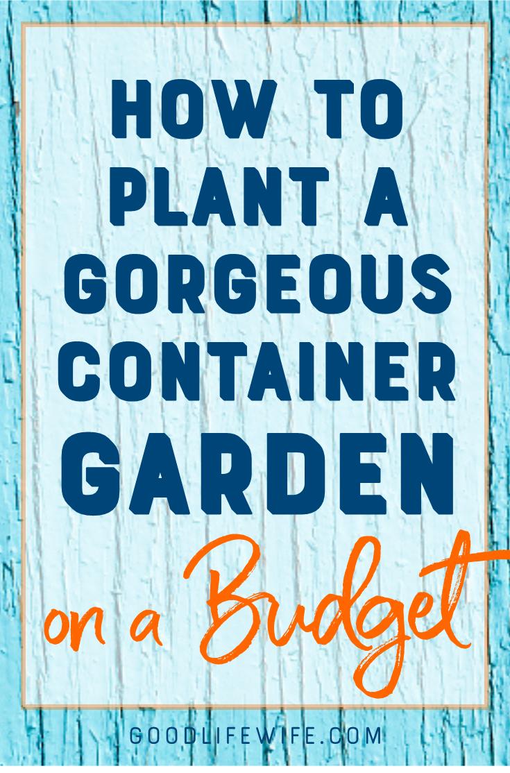 Learn how to plant a simple container garden on the cheap! All you need is a great design formula, inexpensive plants and a little patience.